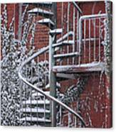 Spiral Staircase With Snow And Cooper's Hawk Canvas Print