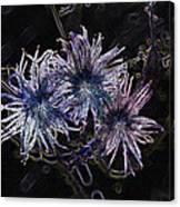 Spirit Flowers Canvas Print