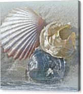 Spirit Of The Sea - Seashells And Surf Canvas Print