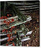 Split Rail Fence Canvas Print