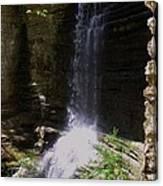 Spring Falls I Canvas Print