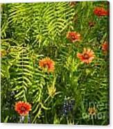 Spring Filter Canvas Print