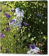 Spring Garden 2 Canvas Print