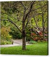 Spring Garden Landscape Canvas Print