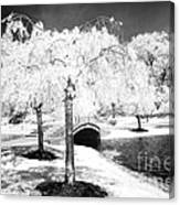 Spring In Infrared Canvas Print