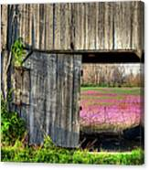 Spring In Kentucky Canvas Print