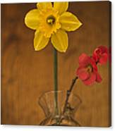 Spring On Display Canvas Print
