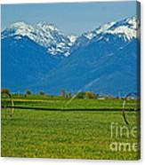 Spring On The Missions Canvas Print
