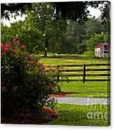 Spring Ranch Canvas Print