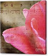 Spring Sings Canvas Print