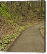 Spring Trail Scene 4 Canvas Print