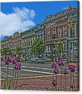Spring Tulips Downtown Georgetown Canvas Print