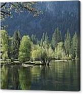 Spring View Of The Merced River Canvas Print