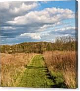 Spring's Mowed Path Canvas Print