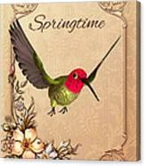 Springtime - Hummingbird Canvas Print
