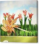 Springtime Fun Canvas Print