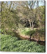 Springtime Meadow Canvas Print