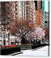 Springtime On Park Avenue Canvas Print