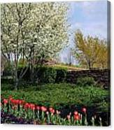 Sprung Spring Canvas Print
