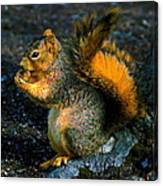 Squirrel At Riverfront Park Canvas Print