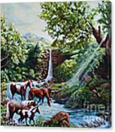 Srb Wild Horses Canvas Print