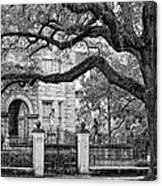 St. Charles Ave. Monochrome Canvas Print
