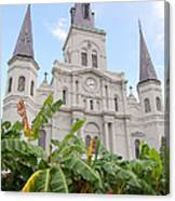St Louis Cathedral Rising Above Palms Jackson Square French Quarter New Orleans Print  Canvas Print