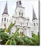 St Louis Cathedral Rising Above Palms Jackson Square New Orleans Diffuse Glow Digital Art Canvas Print