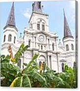 St Louis Cathedral Rising Above Palms Jackson Square New Orleans Film Grain Digital Art Canvas Print