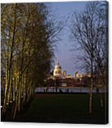 St Paul's With Silver Birches Canvas Print