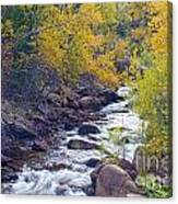 St Vrain Canyon And River Autumn Season Boulder County Colorado Canvas Print