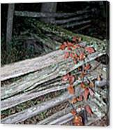 stacked Fence Canvas Print