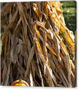 Stacked Stalks And Placed Pumpkin Canvas Print