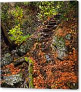 Stairway To The Sky Canvas Print