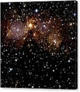 Star Forming Regions Canvas Print