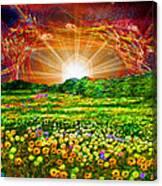 Star Set Canvas Print