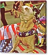 Star Spangled Dog Canvas Print