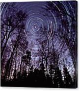 Star Trails Canvas Print