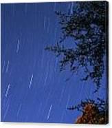 Stars Falling Canvas Print