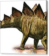 Stegosaurus Armatus, A Prehistoric Era Canvas Print