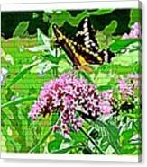 Stencilled Butterfly Canvas Print