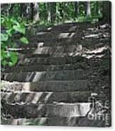 Step By Step Canvas Print