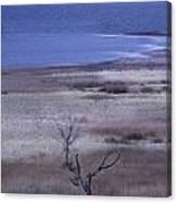 Stevenson Lake Canvas Print