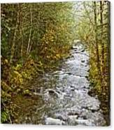 Still Creek Canvas Print