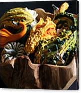 Still Life With Gourds Canvas Print
