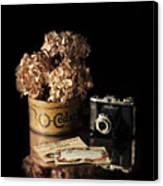 Still Life With Hydrangea And Camera Canvas Print