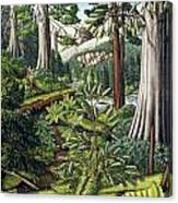 Stoltman Old Growth Forest Landscape Painting Canvas Print