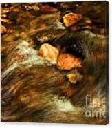 Stone Mountain River Rocks Canvas Print