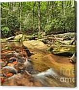 Stone Mountain Stream Canvas Print