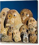 Stone Owls Canvas Print